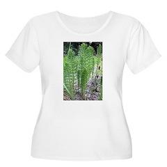 Horsetail Equisetum T-Shirt
