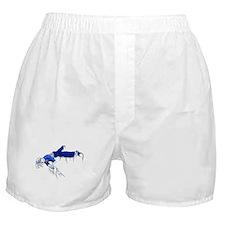 Ice Pose Boxer Shorts