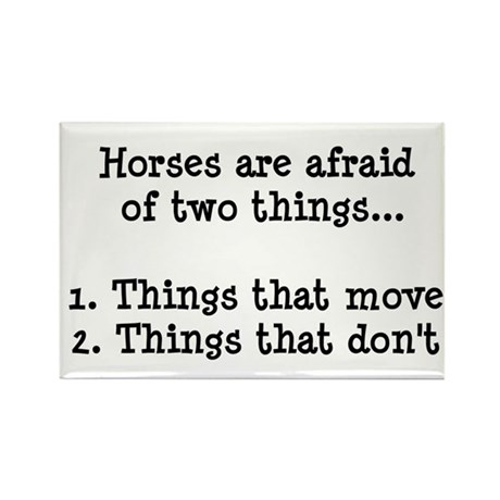 Scared Horse Magnets
