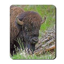 Buffalo Wood Pile Mousepad