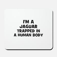 I'm a Jaguar trapped in a hum Mousepad