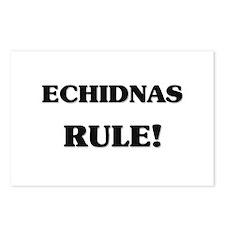 Echidnas Rule Postcards (Package of 8)