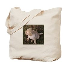 Puppy Stuff Tote Bag
