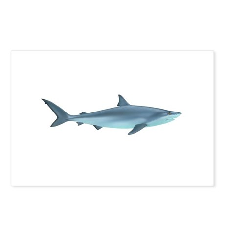 Sharks Postcards (Package of 8)
