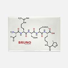Bruno name molecule Rectangle Magnet