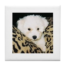 BICHON PUPPY FACE TILE COASTER