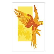 Orange Parrot Postcards (Package of 8)