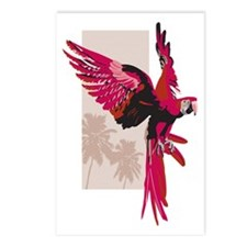 Pink Parrot Postcards (Package of 8)