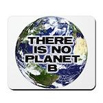 No Planet B Mousepad