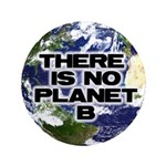 """No Planet B 3.5"""" Button (100 pack)"""