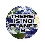 "No Planet B 3.5"" Button"