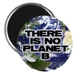 """No Planet B 2.25"""" Magnet (10 pack)"""