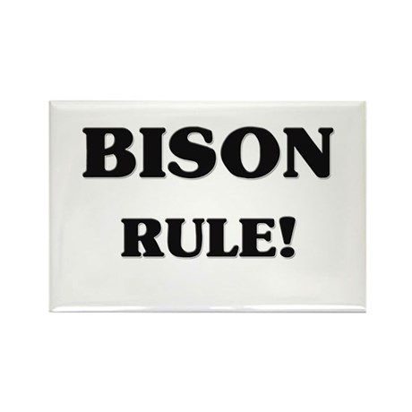 Bison Rule Rectangle Magnet (10 pack)