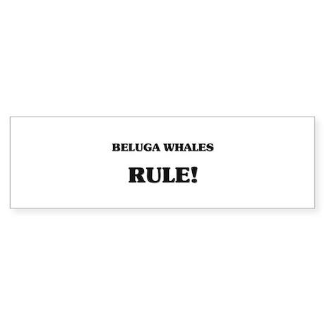 Beluga Whales Rule Bumper Sticker
