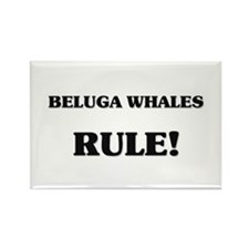 Beluga Whales Rule Rectangle Magnet