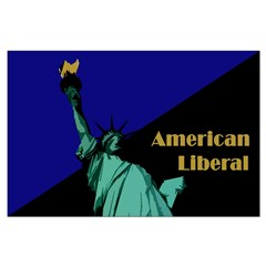 American Liberal (23x35 poster)