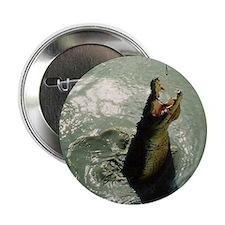 Jumping River Crocodile, NT Button/Badge