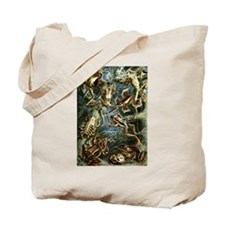 Haeckel: Frogs Tote Bag