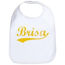 Vintage Brisa (Orange) Bib
