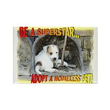 Be a Superstar... Rectangle Magnet