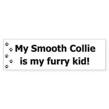 Smooth Collie Furry Kid Bumper Bumper Sticker