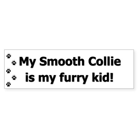 Smooth Collie Furry Kid Bumper Sticker
