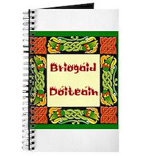 Dáithí Athey Briogáid Dóiteáin- Fire Briga Journal