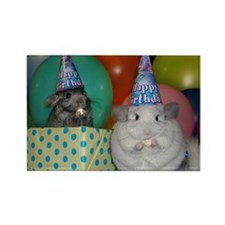 chinchilla party Magnets