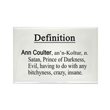 anti-ann coulter Rectangle Magnet