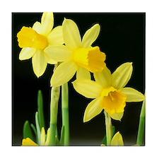 Sunny Daffodils Tile Coaster