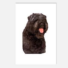 Bouvier Des Flandres Dog Postcards (Package of 8)