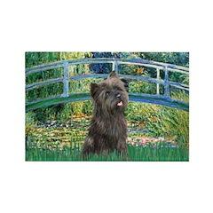 Bridge /Cairn Terrier (w) Rectangle Magnet