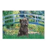 Bridge /Cairn Terrier (w) Postcards (Package of 8)