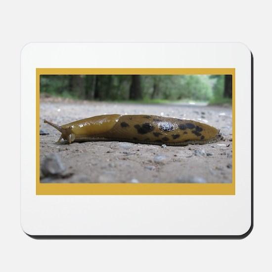 Banana Slug in Forest Mousepad