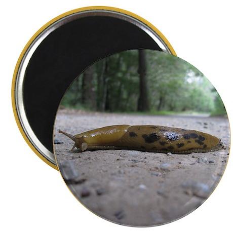 """Banana Slug in Forest 2.25"""" Magnet (10 pack)"""