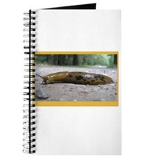 Banana Slug in Forest Journal