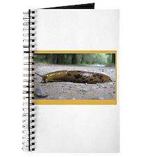 Banana Slug in Forest Journal