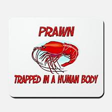 Prawn trapped in a human body Mousepad