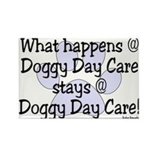 What happens @ DDC Rectangle Magnet (10 pack)