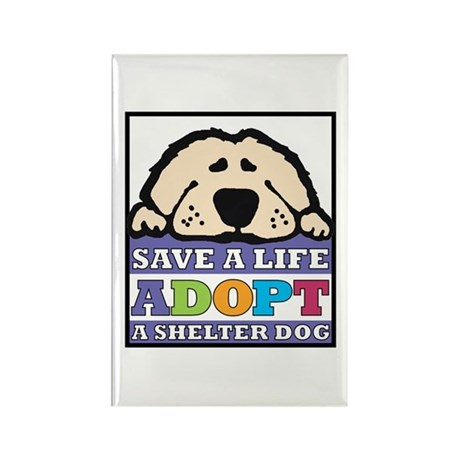 Save a Life Rectangle Magnet (10 pack)