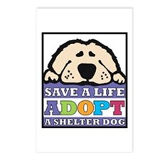 Save a Life Postcards (Package of 8)