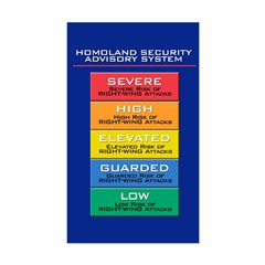 HOMOLAND SECURITY Rectangle Decal