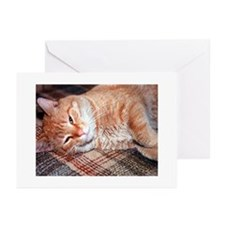 Note Card Store Greeting Cards (Pk of 20)