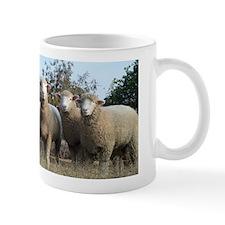 Polled Ewes Mug