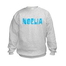 Noelia Faded (Blue) Sweatshirt