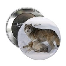 "Domination Wolves 2.25"" Button"