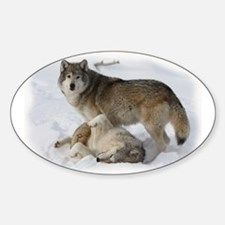 Domination Wolves Oval Decal