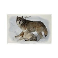 Domination Wolves Rectangle Magnet