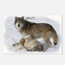 Domination Wolves Postcards (Package of 8)
