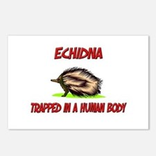 Echidna trapped in a human body Postcards (Package